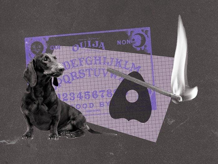 La planche de Ouija qui n'arrêtait pas de parler.