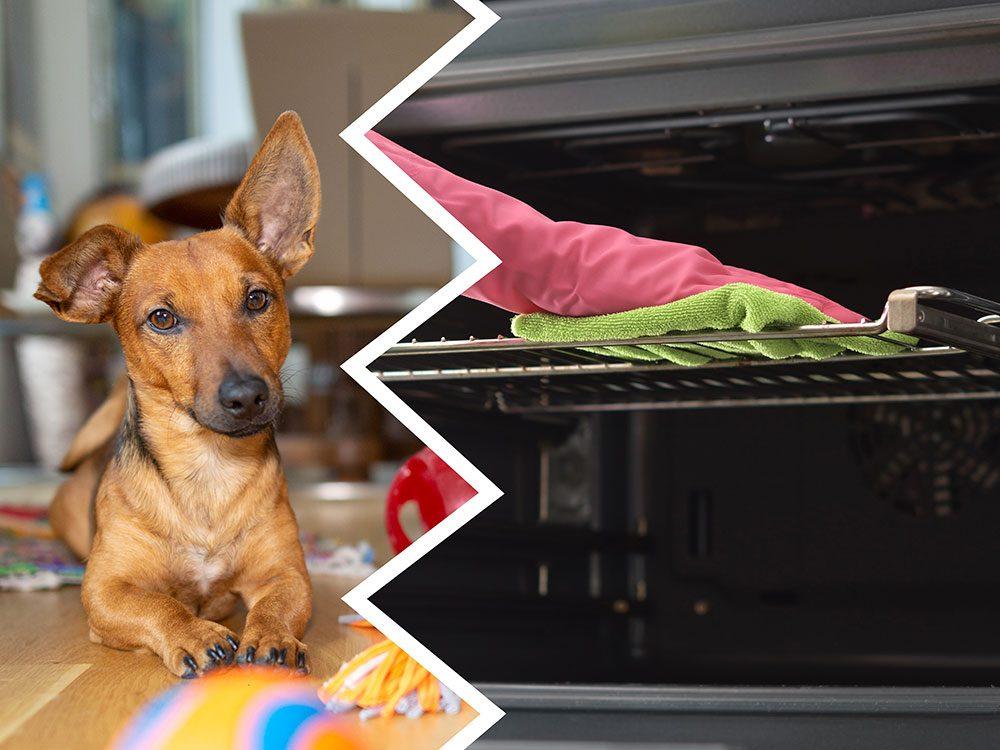 Le nettoyant pour le four fait partie des produits nettoyants toxiques pour le chien.