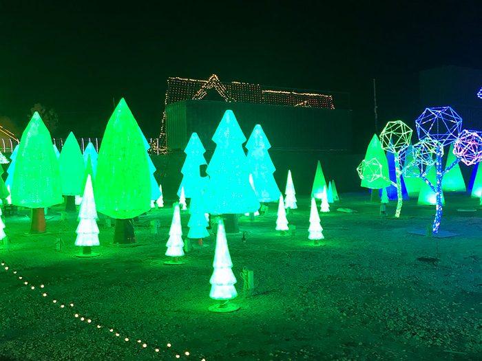 La forêt de papier d'Illumi.
