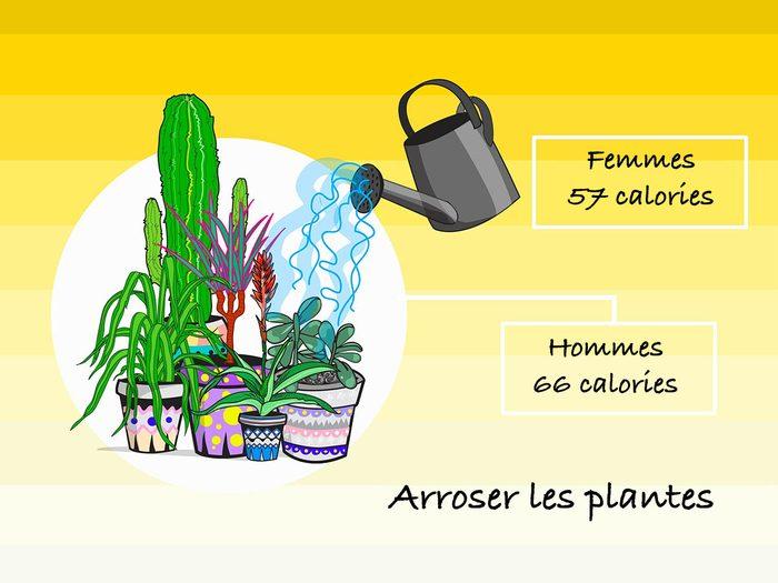 Arroser les plantes pour brûler des calories.