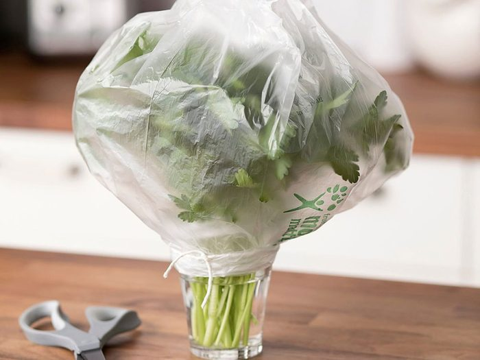 Conserver les herbes fraîches avec les sacs de plastique.