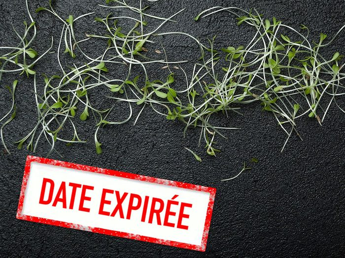 Faites attention à la date de péremption des graines germées.