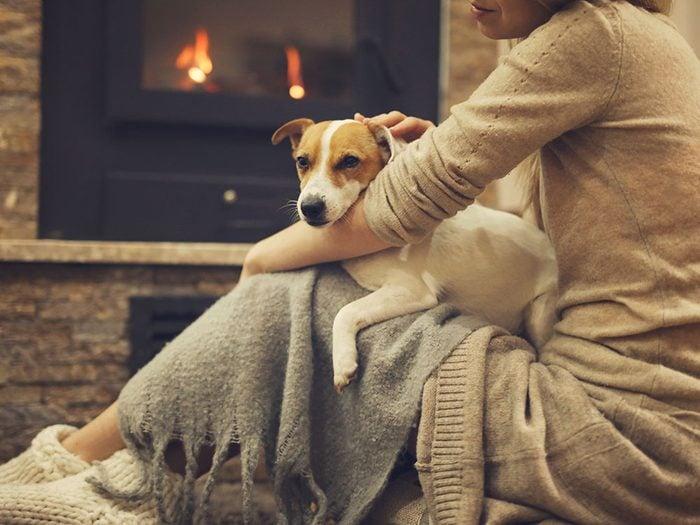 Quel est l'impact de la température à l'intérieur de la maison sur nos animaux de compagnie?