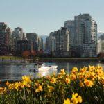 Sécateur en série: je suis le voleur de fleurs de Vancouver