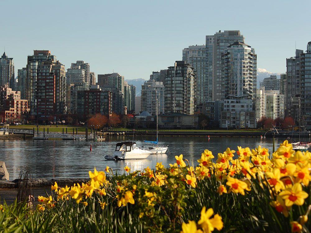 Je suis le voleur de fleurs de Vancouver.