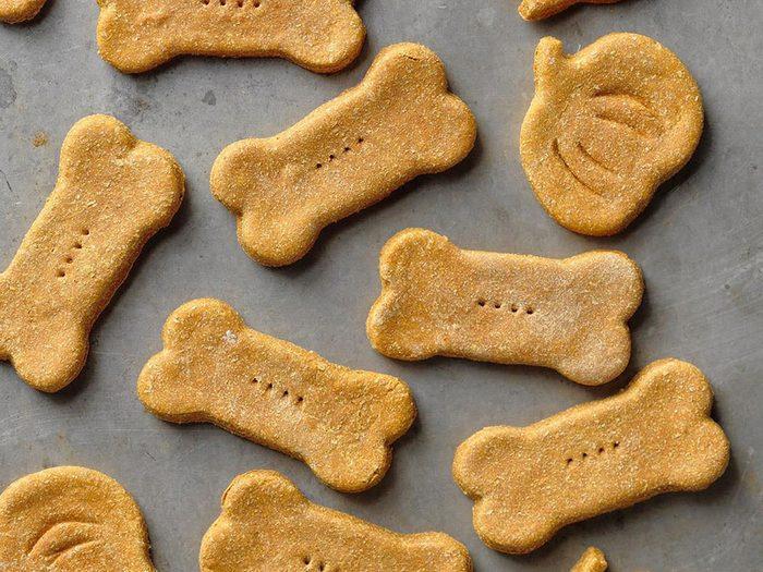 Biscuits pour chiens à la citrouille et au gingembre.