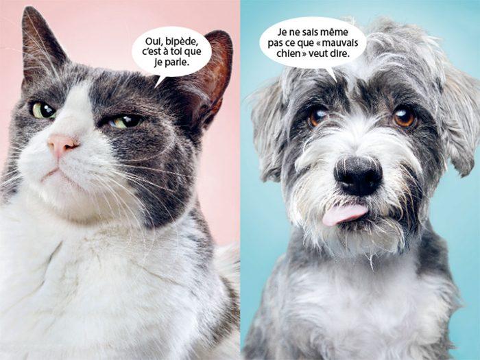Si les animaux pouvaient parler.