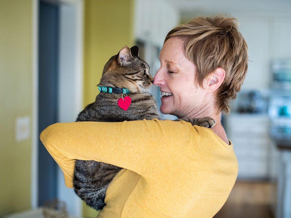 Voici 8 races de chats hypoallergéniques pour les personnes allergiques.