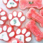 8 recettes pour faire des friandises pour chiens