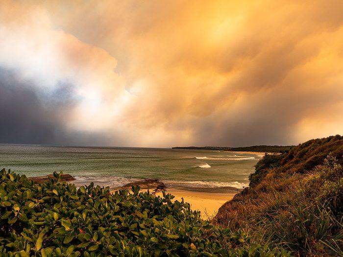 Incendies en Australie: l'état d'urgence.