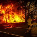 Les feux de forêt en Australie: témoignage d'une journaliste