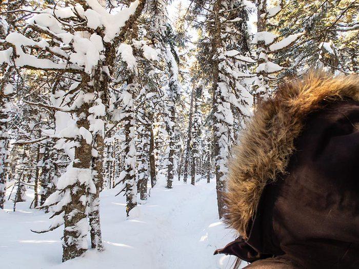 Le Parc National du Mont-Mégantic dans les Cantons-de-l'Est est l'un des sentiers de raquette au Québec.