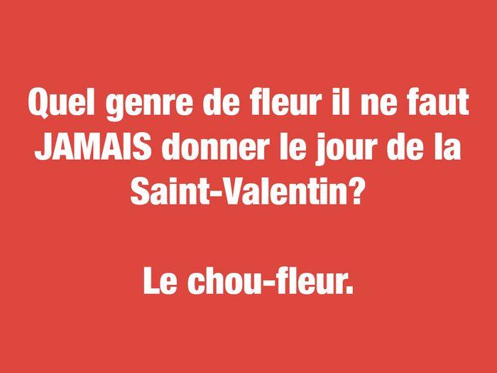 Blagues Ccurtes: quel genre de fleur il ne faut JAMAIS donner le jour de la Saint-Valentin?