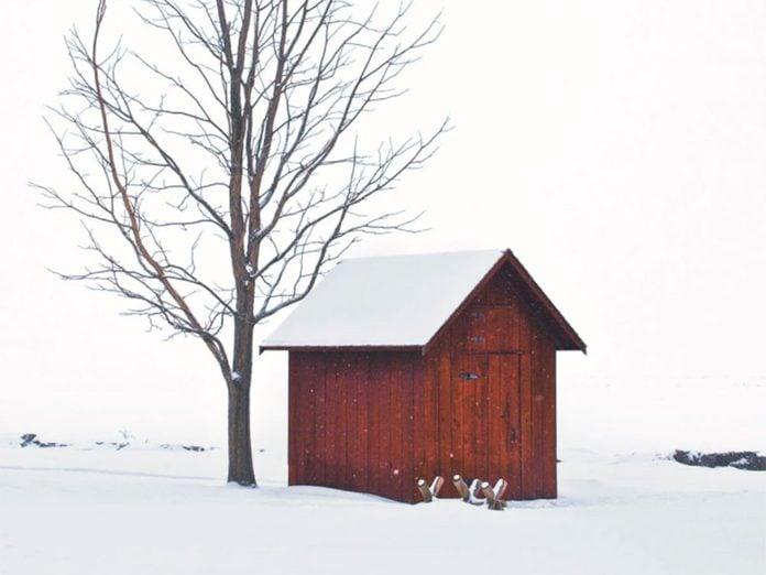 La beauté de l'hiver canadien à travers cette image de la John R. Park Homestead Conservation Area.