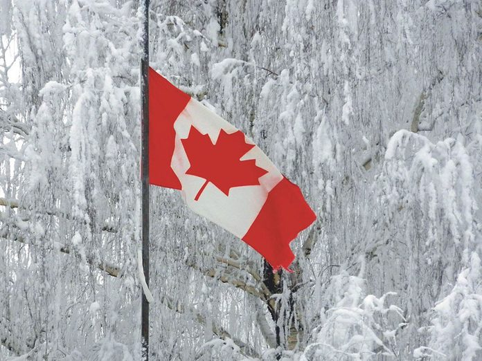 La beauté de l'hiver canadien à travers cette image du drapeau du Canada.