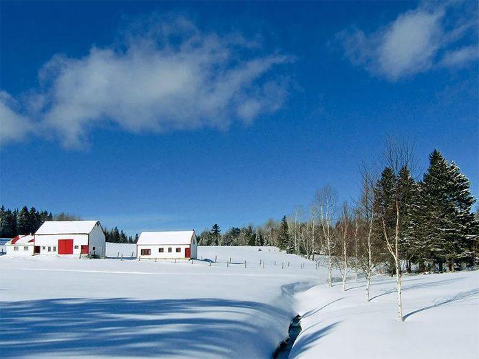 La beauté de l'hiver canadien à travers cette image d'une ferme du New Jersey, au Nouveau-Brunswick.