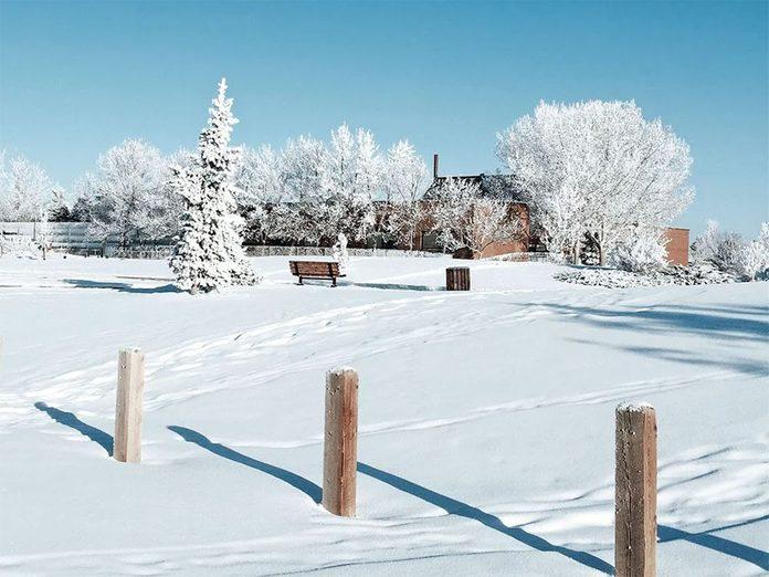 La beauté de l'hiver canadien à travers ce paysage du sud de l'Alberta.