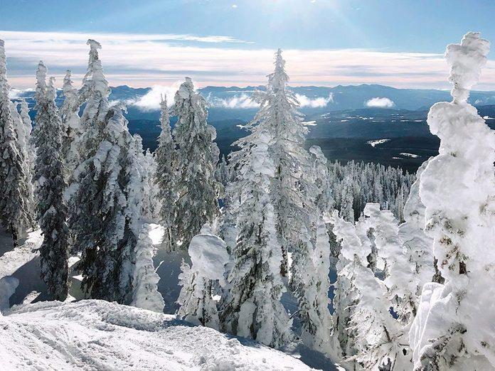 La beauté de l'hiver canadien à travers cette image du Big White à Kelowna, en Colombie-Britannique.