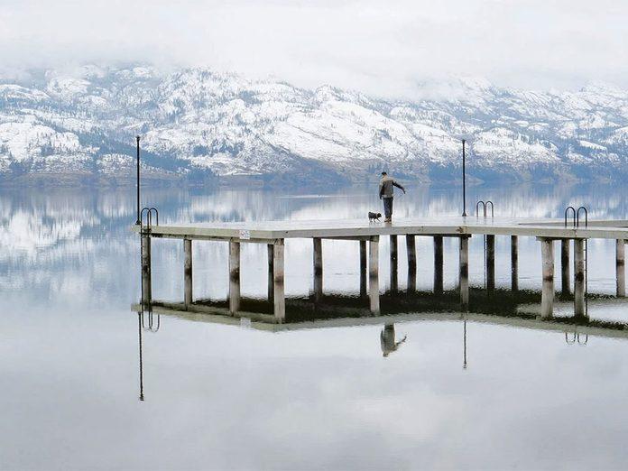 La beauté de l'hiver canadien à travers cette image de nature morte.