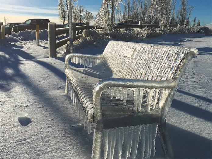 La beauté de l'hiver canadien à travers cette image du Fraser River Heritage Park à Mission, en Colombie-Britannique.