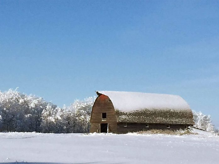 La beauté de l'hiver canadien à travers cette image de Brandon, au Manitoba.