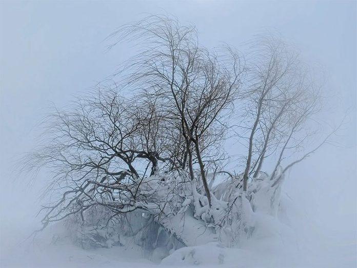 La beauté de l'hiver canadien à travers cette image de la plage de Goderich.