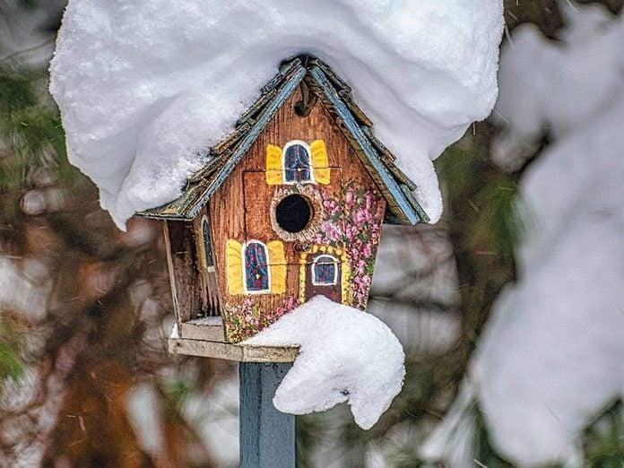 La beauté de l'hiver canadien à travers cette image prise à Oakville en Ontario.
