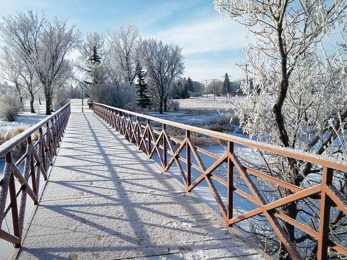 La beauté de l'hiver canadien à travers cette image prise le long du Devonian Pathway.