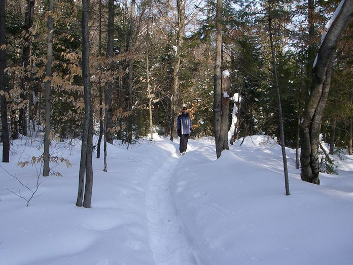 Le sentier Mestachibo est parfait pour une randonnée hivernale.