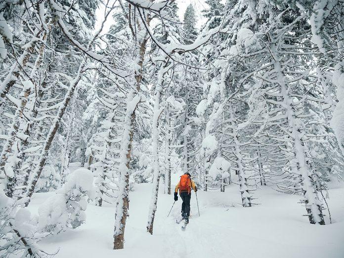 Le Parc régional du Massif du Sud est parfait pour une randonnée hivernale.