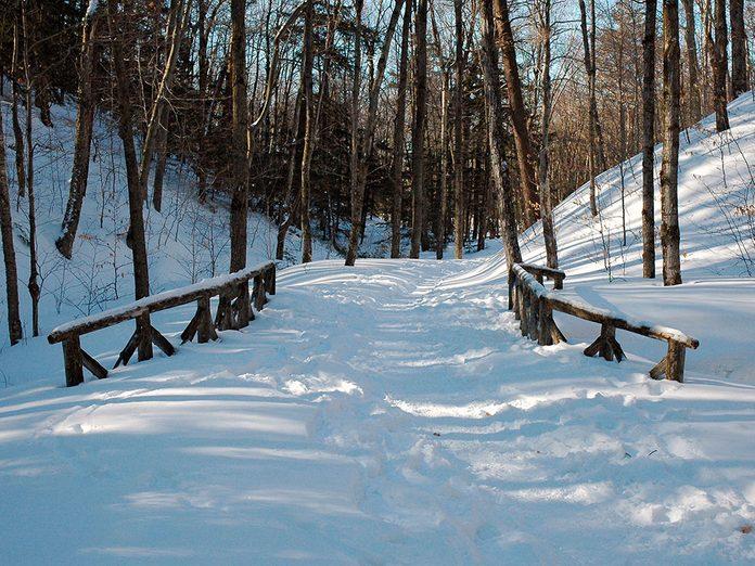 Le Parc de la Gatineau est parfait pour une randonnée hivernale.