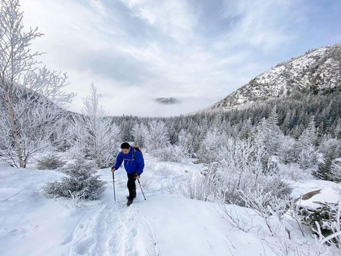 Le Parc national des Grands-Jardins est idéal pour une randonnée hivernale.