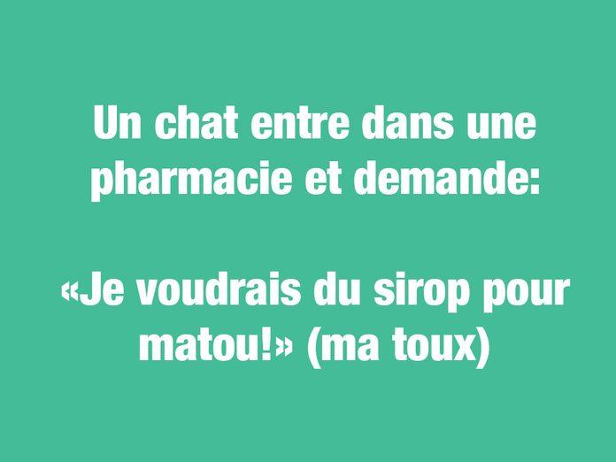 Blagues courtes et drôles: un chat rentre dans une pharmacie...