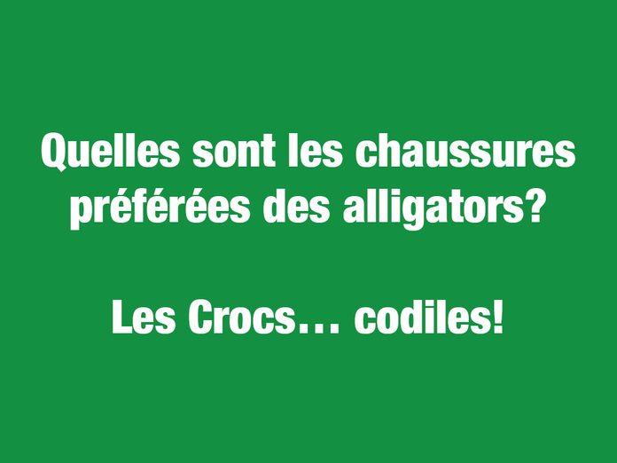Blagues courtes et drôles: les chaussures préférées des alligators...