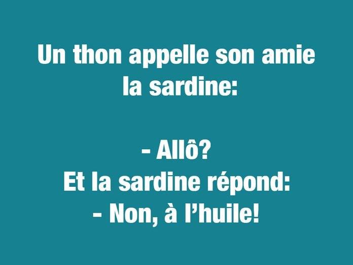 Blagues courtes et drôles: un thon appelle son amie la sardine...