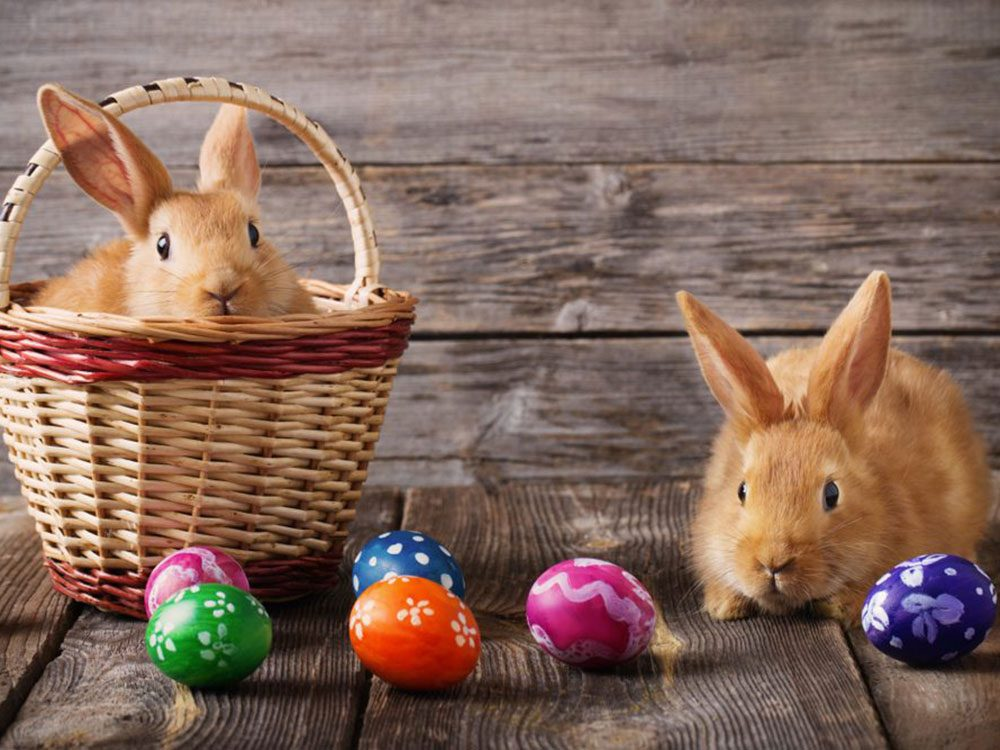 Pour certains, l'équinoxe de printemps définirait la date de célébration de Pâques.