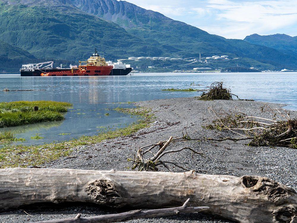 Menace sur les caribous dans la baie du Prince-William en Alaska.