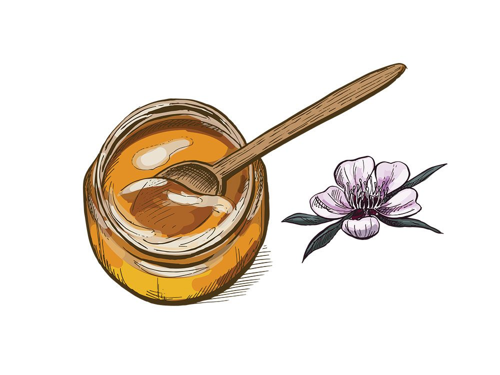 Le miel de manuka est l'un des remèdes maison utilisés en Nouvelle-Zélande.