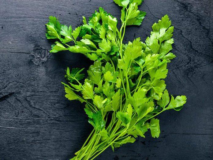 Les herbes fraîches font partie des aliments qu'il vaut mieux ne jamais laisser dans son garde-manger.