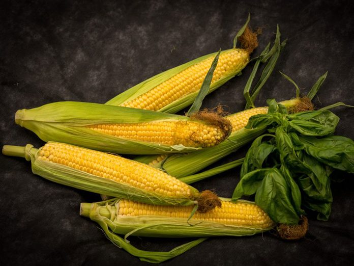 Le maïs en épi fait partie des aliments qu'il vaut mieux ne jamais laisser dans son garde-manger.