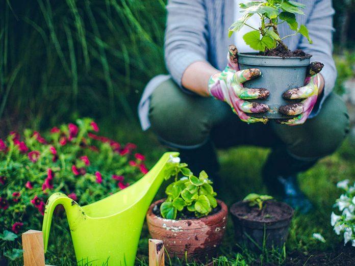 Cultiver son jardin… intérieur pour une meilleure gestion du stress.