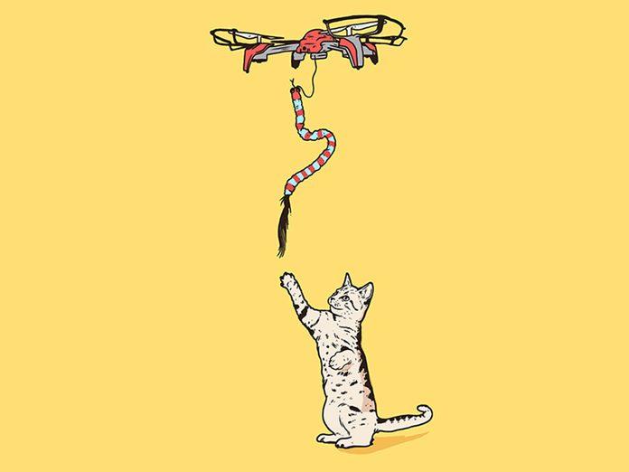 Le drone-à-chat fait partie des inventions étranges et merveilleuses.