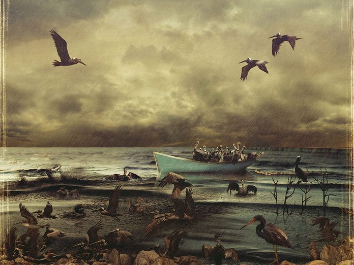 La tragédie du grand peintre Tom Thomson est l'un des plus grands mystères du Canada.