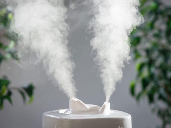 Contrôlez l'humidificateur pour éviter les parasites dans la maison.