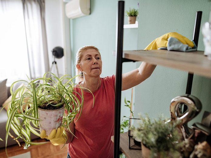 Mieux vaut avoir un intérieur impeccable pour éviter les parasites dans la maison.