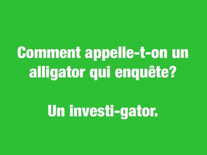 Blagues courtes: comment appelle-t-on un alligator qui enquête?