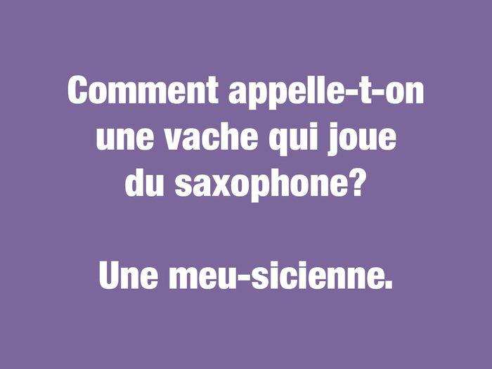 Blagues courtes: comment appelle-t-on une vache qui joue du saxophone?