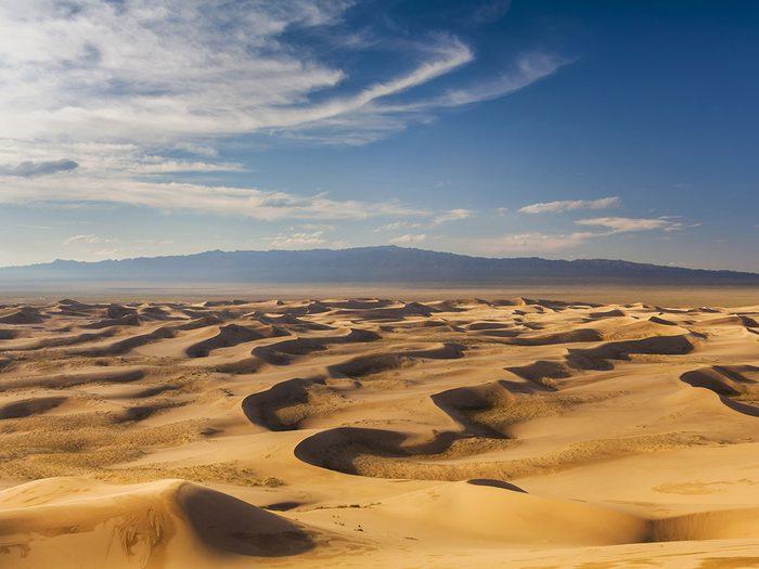 Sous la chaleur du désert de Gobi.