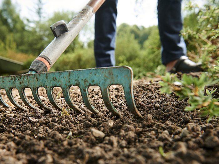 Fertiliser son jardin avec des coquilles d'oeufs.