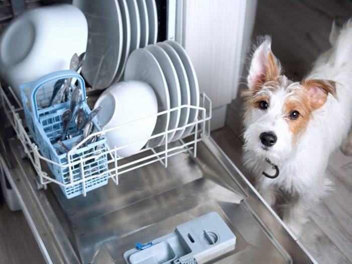 Mettre du poids sur la porte est l'une des choses qui réduisent la durée de vie d'un lave-vaisselle.